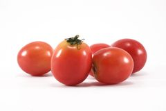 Fresh tomatoes. Vivid vegetarian vegetable Stock Photos