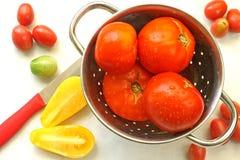 Fresh Tomatoes. Display of various tomato varieties Stock Image