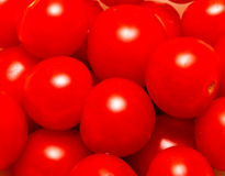 Fresh tomatoes. Cherry. Can be used as a background Stock Photos