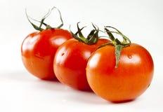 The fresh tomatoes. Isolated on white background Stock Photos