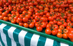 Fresh Tomatoes. Fresh Ripe Tomatoes on a market stall Royalty Free Stock Images