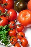 Fresh tomatoes Stock Photography