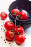 Fresh tomatoes. On plates and spice Stock Images