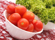Fresh tomatoes. Some fresh tomatoes in a bowl Royalty Free Stock Photos
