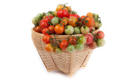 Fresh tomatoes. Fresh  tomatoes in a basket on white background Royalty Free Stock Image