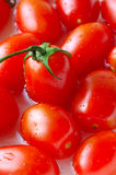 Fresh tomatoes. Close up of fresh tomatoes royalty free stock photography