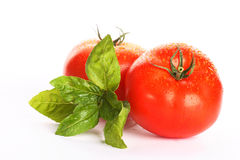 Fresh tomatoes. On white background stock photo
