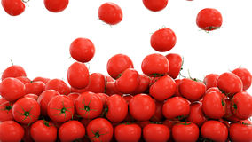 Fresh tomatoes background. Food concept. 3d rendering.
