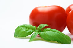 Fresh Tomatoes and Basil Stock Image