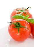 Fresh tomatoes and basil Stock Photography