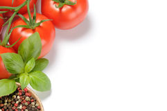 Fresh tomatoes, basil and grain pepper Stock Photography