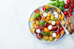 Fresh tomatoes with basil leaves in a bowl Royalty Free Stock Photography