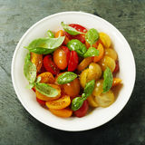 Fresh tomatoes with basil leaves in a bowl Royalty Free Stock Images