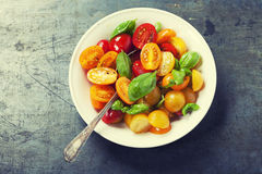 Fresh tomatoes with basil leaves in a bowl Royalty Free Stock Image