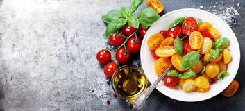Fresh tomatoes with basil leaves in a bowl Royalty Free Stock Photos