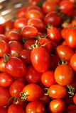 fresh tomatoes in basket. Royalty Free Stock Photography