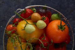 Fresh tomatoes in a basket stock photography