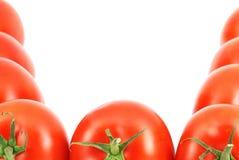 Fresh tomatoes border Royalty Free Stock Photo