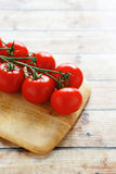 Fresh tomatoes on a branch Royalty Free Stock Images