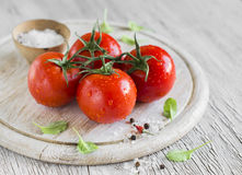 Fresh tomatoes on a branch Royalty Free Stock Photo