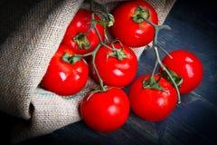 Fresh tomatoes on burlap sack Stock Images