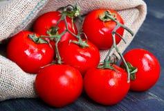 Fresh tomatoes on burlap sack Royalty Free Stock Photo