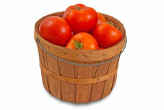 Fresh Tomatoes for Canning Stock Images