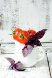 Fresh tomatoes cherry Royalty Free Stock Photos