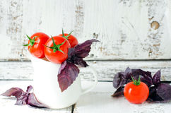 Fresh tomatoes cherry Royalty Free Stock Image