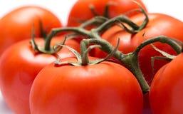 Fresh tomatoes. Close up of fresh tomatoes Royalty Free Stock Photo