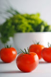 Fresh tomatoes close up. Fresh salad and tomatoes close up Royalty Free Stock Photography