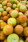 Fresh Tomatoes. Close up a pile of fresh tomato in the market Stock Photo