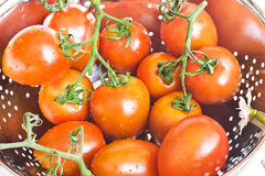 Fresh tomatoes in a colander Royalty Free Stock Images