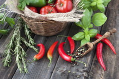 Fresh tomatoes  and Colorful pepper with basil Stock Photos