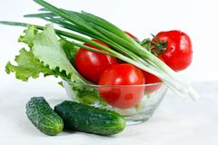 Fresh tomatoes, cucumber, lettuce and green onions. Branch of fresh tomatoes, cucumber, lettuce, green onions in a salad-bowl. Healthy vitamin food Royalty Free Stock Photos