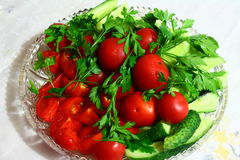 Fresh tomatoes with cucumbers. In a plate on a table piled with fresh tomatoes and cucumbers Royalty Free Stock Image