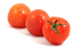 Fresh tomatoes with droplets of water Royalty Free Stock Photos