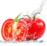 Fresh tomatoes falling in water Royalty Free Stock Photo