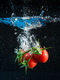 Fresh tomatoes falling in water Stock Photos