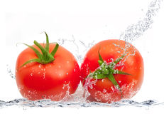 Fresh tomatoes falling in water Royalty Free Stock Images