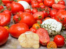 Fresh tomatoes, garlic, onions and thyme in roasting pan Royalty Free Stock Image