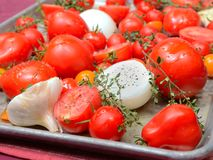 Fresh tomatoes, garlic, onions and thyme in roasting pan Royalty Free Stock Photography