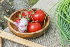 Fresh tomatoes and garlic in wooden bowl. Natural healthy food concept Royalty Free Stock Photography