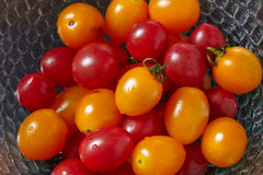 Fresh tomatoes in glass bowl Stock Images
