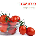 Fresh tomatoes with green leaf in plate isolated Stock Photography