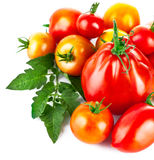 Fresh tomatoes with green leaves Stock Photo