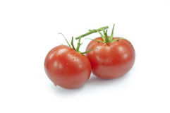 Fresh tomatoes with green leaves isolated Stock Photo