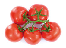 Fresh tomatoes with green leaves Stock Photography