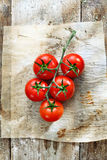 Fresh tomatoes in grungy kitchen Stock Images