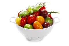 Fresh tomatoes and herbs - healthy eating concept Royalty Free Stock Photos